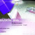 DSC_0221_5
