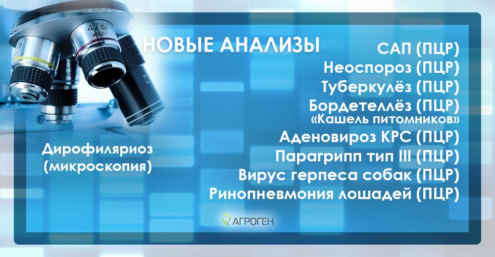 new_bol_vet_ru